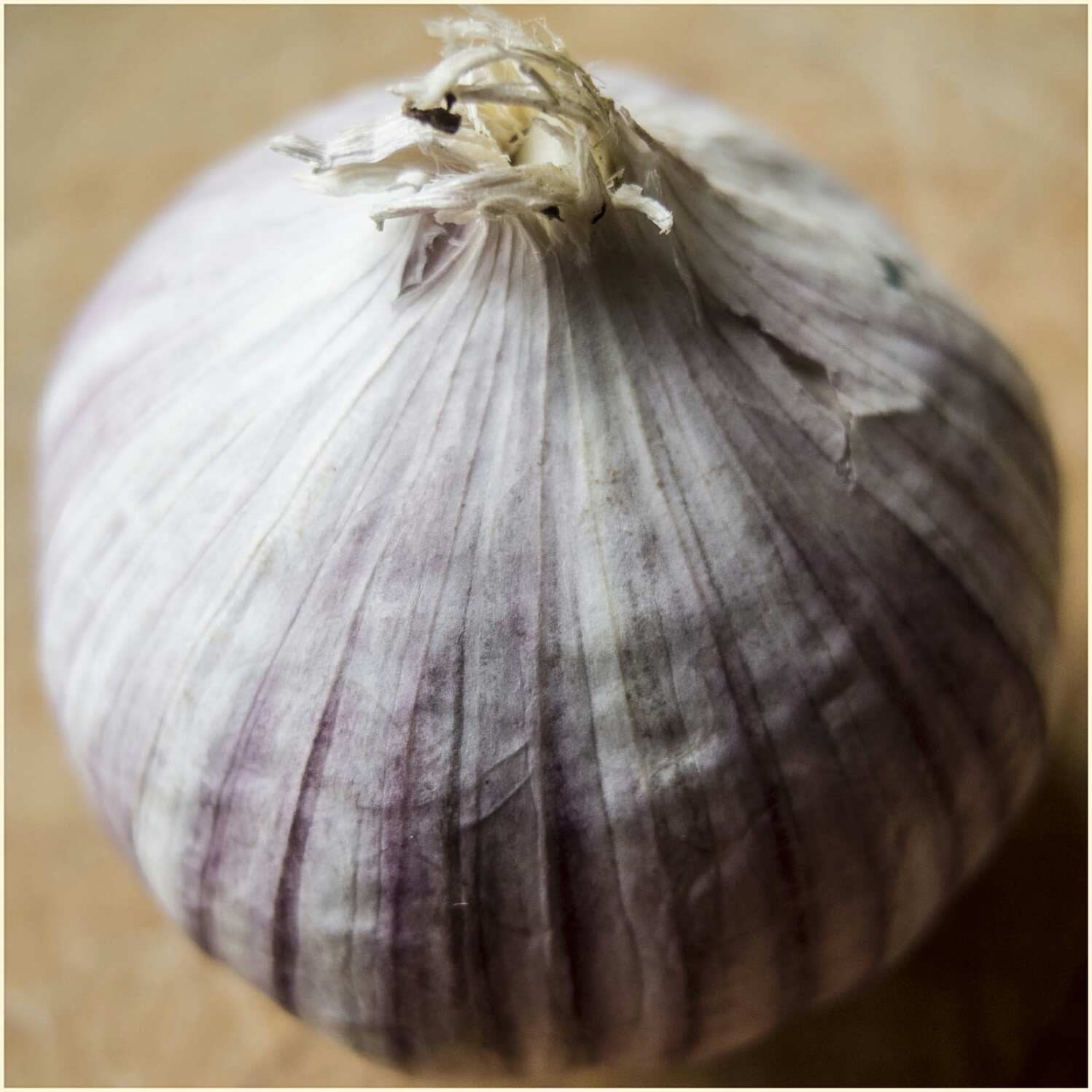 Chinese Garlic_1
