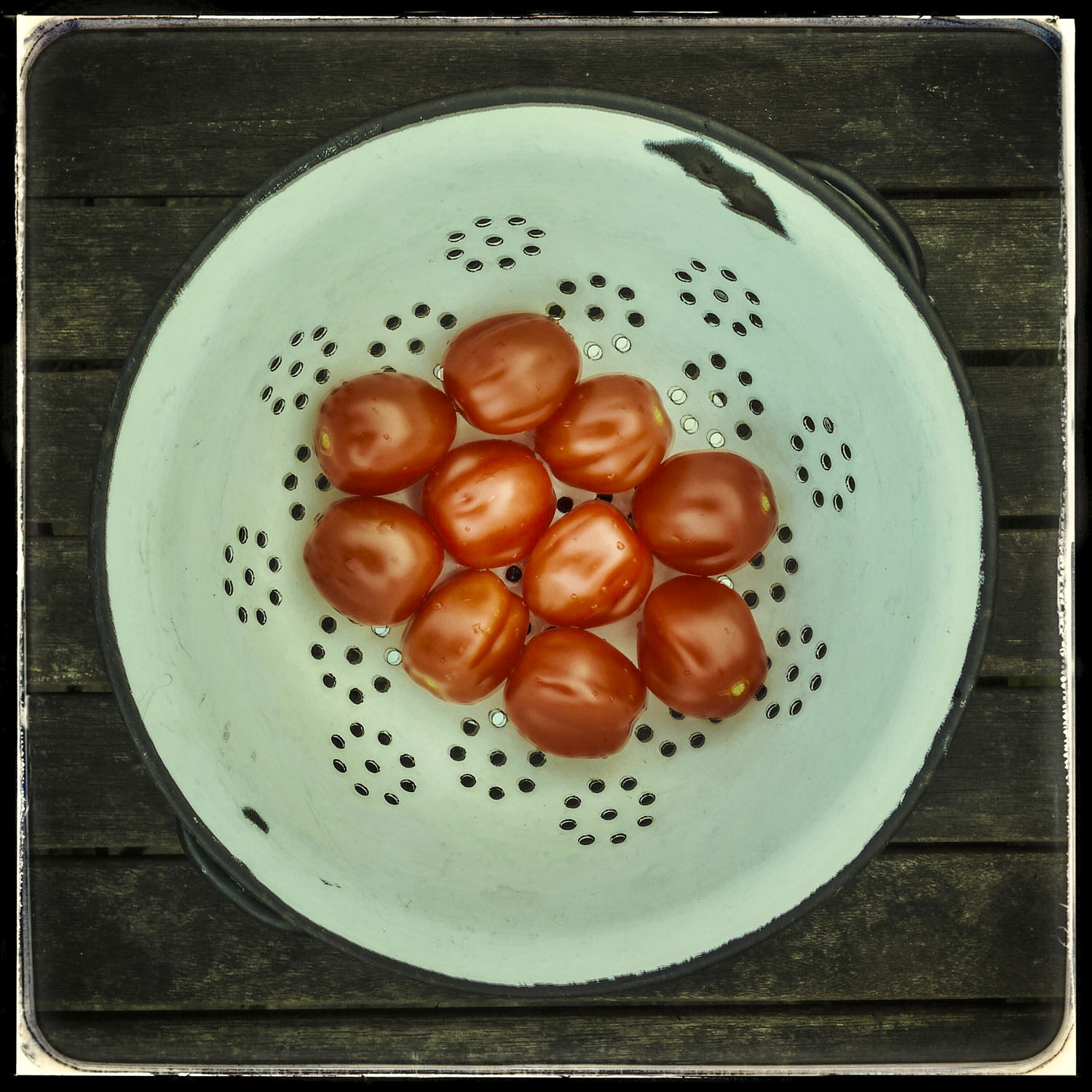 Cullander and Tomatoes