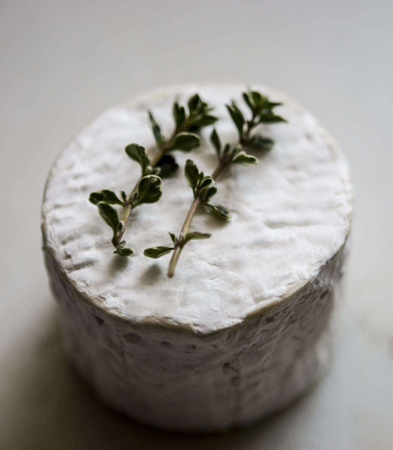 Goats cheese with lemon thyme 1