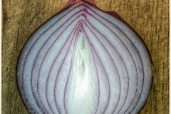 Onion on Board a